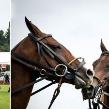 Η συνεργασία της Richard Mille με το Chantilly Polo Club
